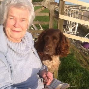 November 2014 - Animal Communication, Ann Lodygowski