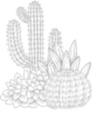 Cactuses     _edited.png