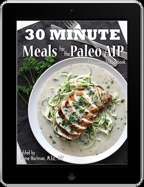 30 Minute AIP Cookbook (ebook)