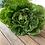 Thumbnail: Lettuce Mini Cos Certified Organic - each