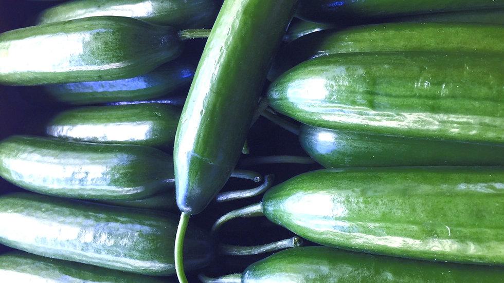 Cucumbers Lebanese Certified Organic -  500gm