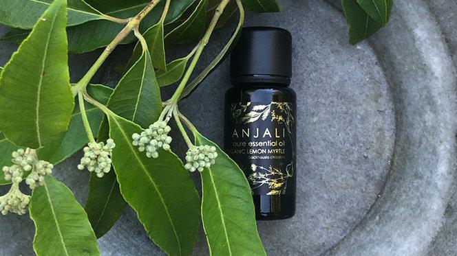 Anjali Lemon Myrtle - Organic essential oils - 15ml