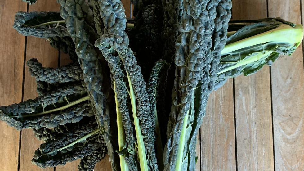 Kale Black Bunch