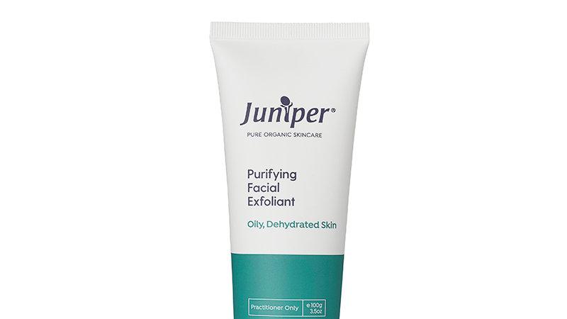 Purifying Facial Exfoliant 100g