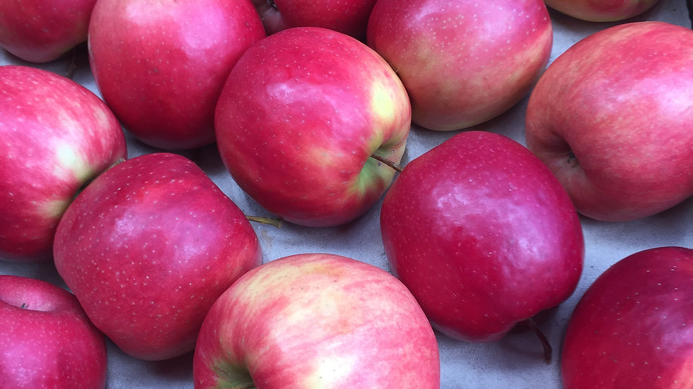 Apples Pink Lady  Certified Organic - 500gm