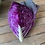 Thumbnail: Cabbage Red Whole - Certified Organic