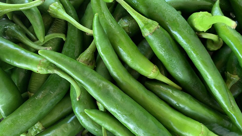 Chilli Green Certified Organic - 100gm