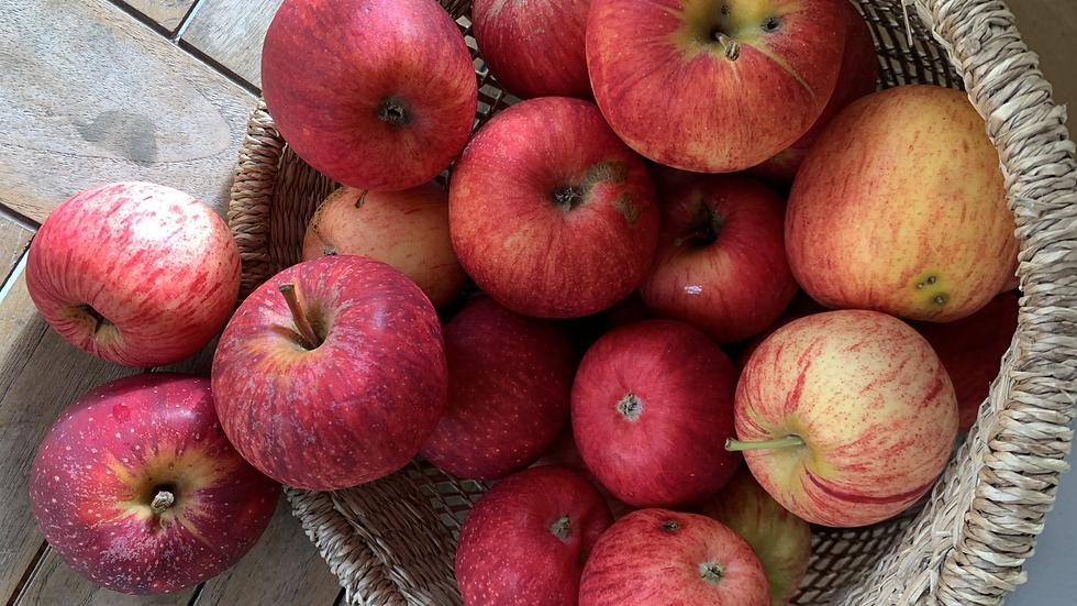 Apples Juicing Certified Organic - 2nd grade - 1kg