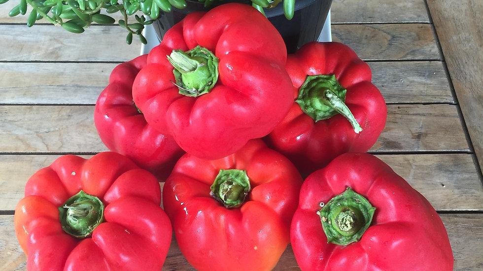 Capsicum Red   -  Certified Organic 250gm