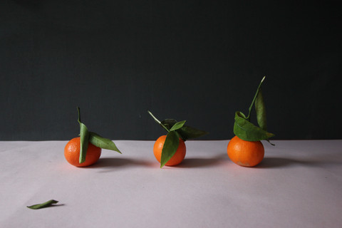 Oranges, clementines, tangerines styling