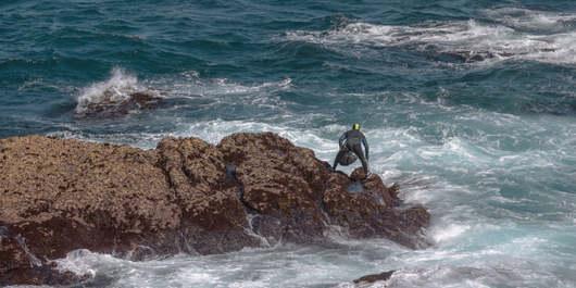 Dep. da Coruña