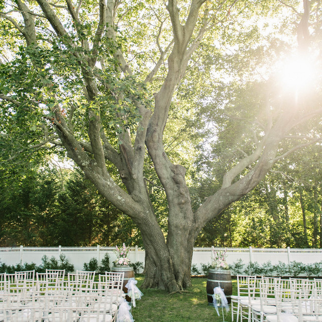 Ceremony Space at Bedell