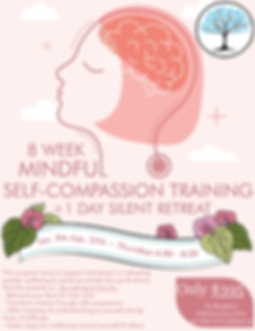 MHASO, Mental Health an Addiction Services of Ottawa, Mindful Self Compassion Training, MSC