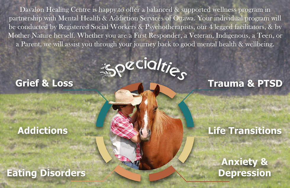 Davalon Healing Centre, MHASO, Mental Health and Addiction Services of Ottawa, Equine Therapy