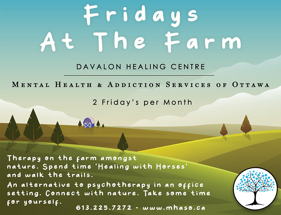 MHASO, Mental Health and Addiction Servies of Ottawa, Davalon Healing Centre, Equine Therapy Ottawa