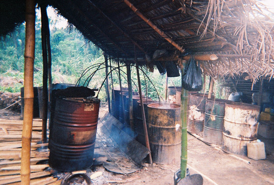 Making Palm Wine in Ghana