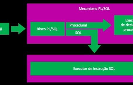 INTRODUÇÃO AO PL/SQL