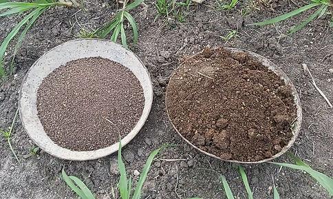Organic Fertilizer for Fodder Maize farming in Ariyalur, Tamil Nadu, India