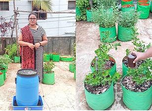 Compost Tea Fertilizer.jpg