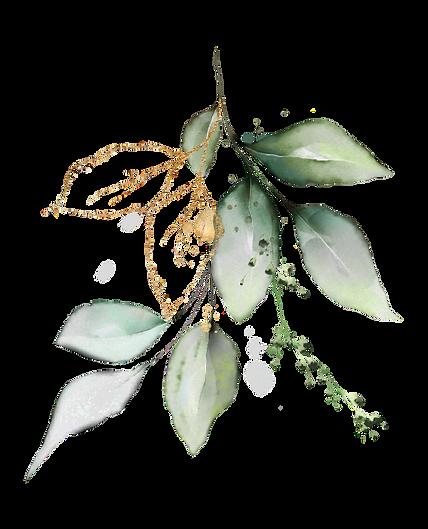 Invitación_Verde_verde_y_dorado_Natural