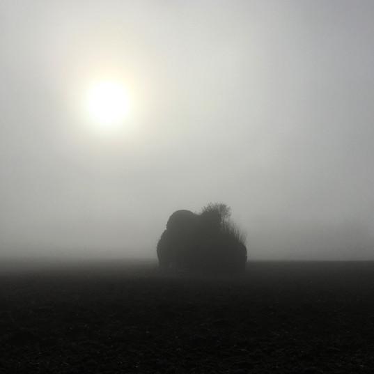 Le Perche, la brume