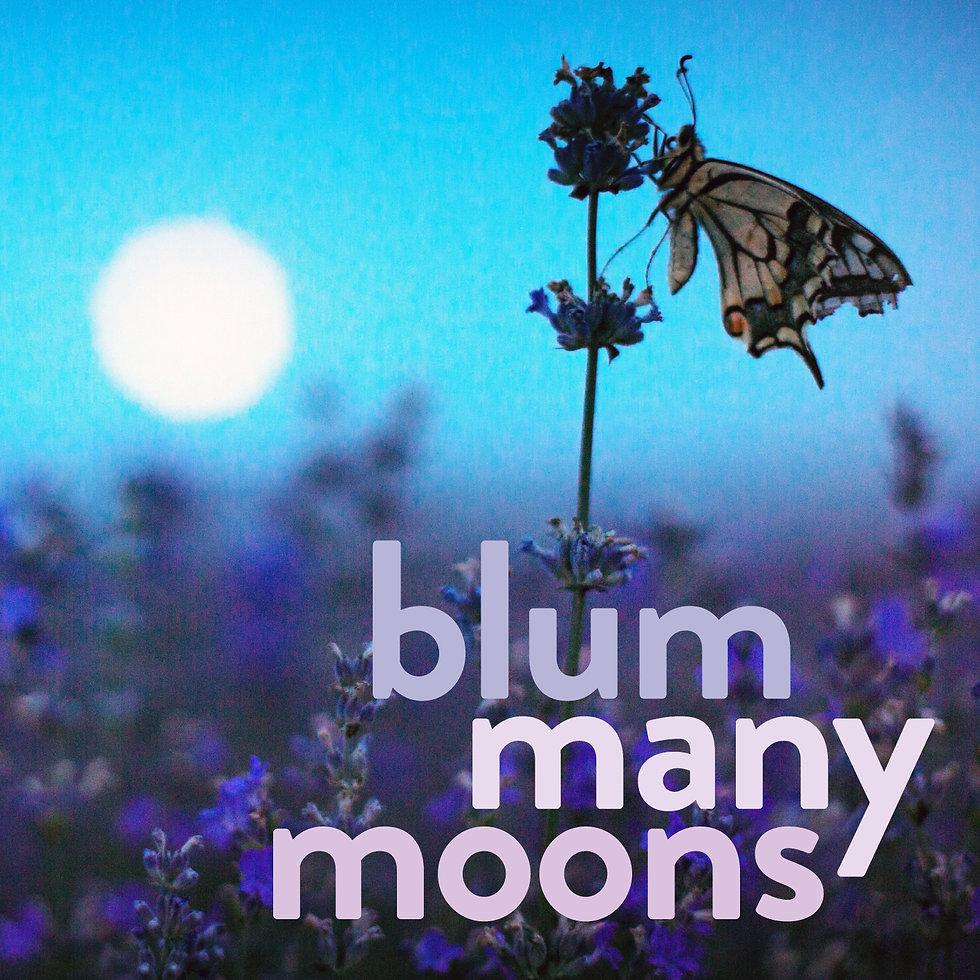 blum many moons CD cover.jpg
