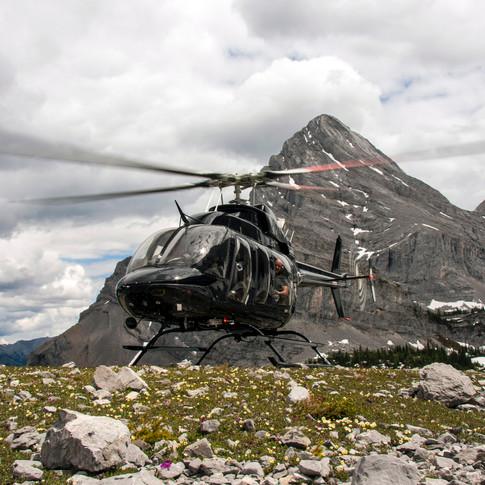 Air Shasta Eagle 407HP
