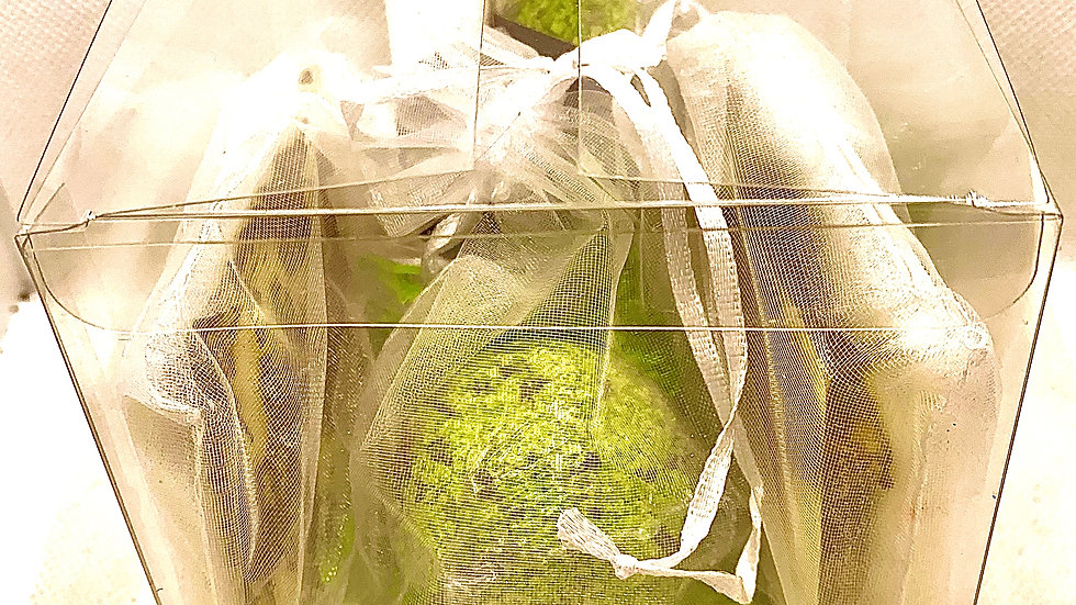 Gift Box Set #5 - 1 Bathbomb, 2 Handmade Soaps, 1 bath fizzy