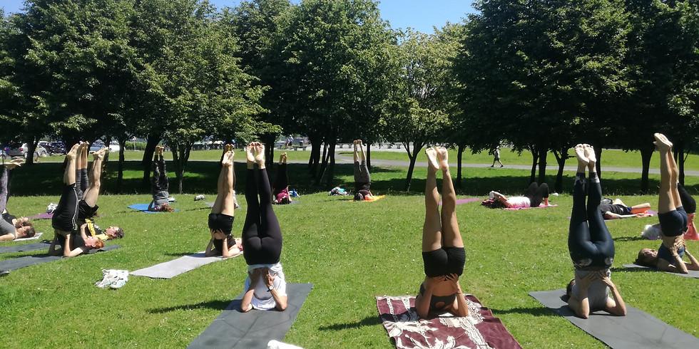 Namaste Yoga Secreto