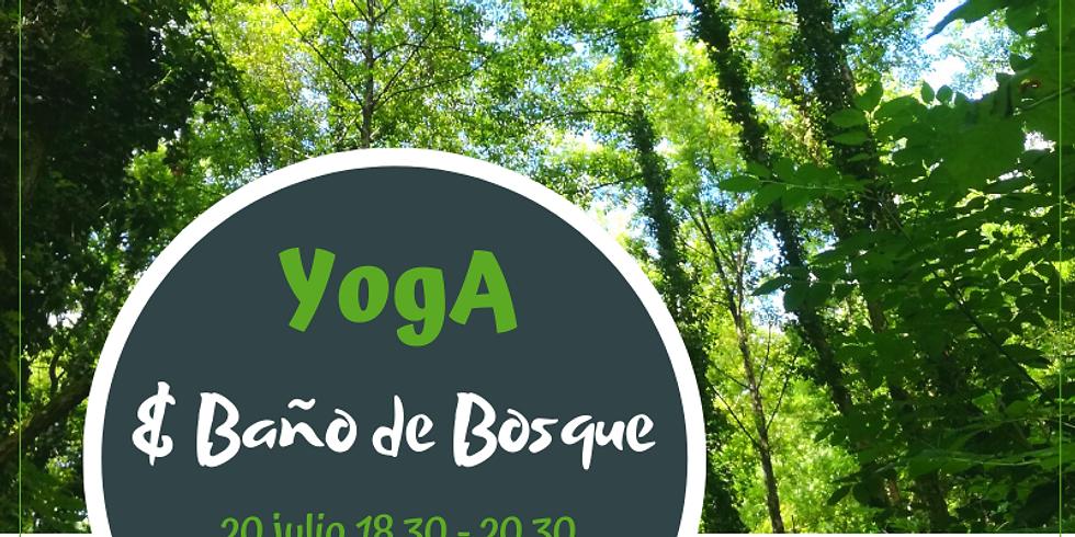 Baño de Bosque & Yoga