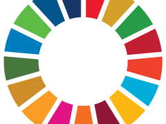 Supporting SDG