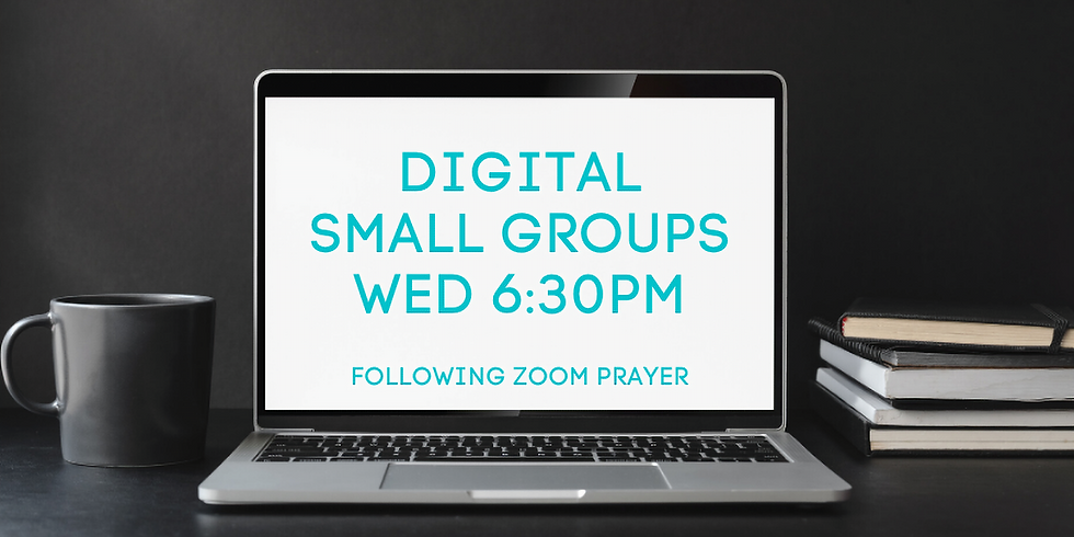 Digital Small Groups