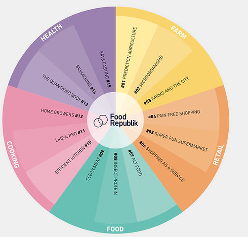 Food Republik_5Futures wheel.001.jpeg