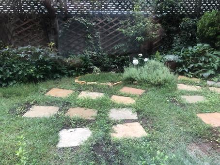 発展途上ガーデン