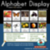 alphabet display, teaching resources, teach the alphabet