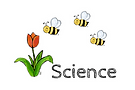 teaching resources for science, learn about animals, science lessons