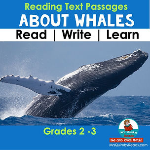 All About Whales - Reading