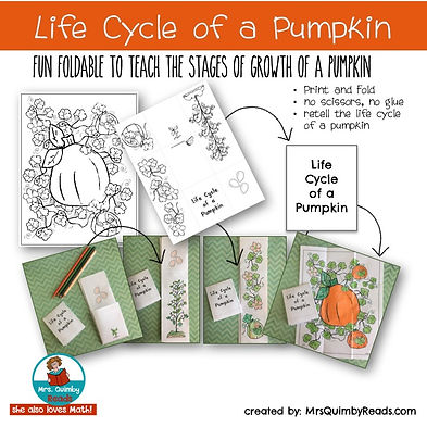 life cycle of pumpkin, science for early grades, foldable science booklet