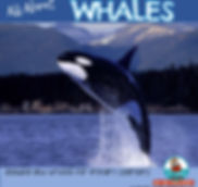 Whales, reading about whales, primary learners, MrsQuimbyReads