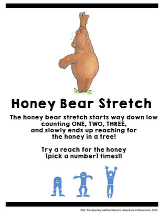 Honey Bear Stretch