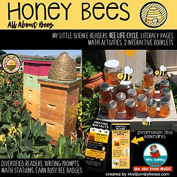 honey bees, learning about bees, bee life cycle, teaching resources, science