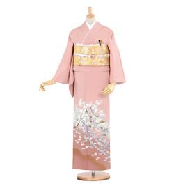 A3 色留袖 ¥9,800+税