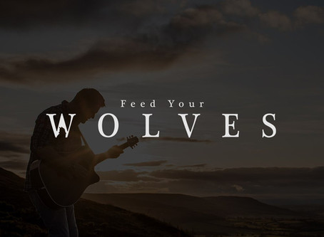 Feed Your Wolves Interview