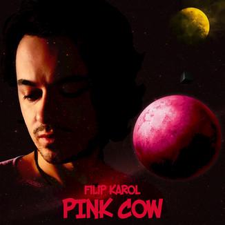 filip-karol-pink-cowjpg