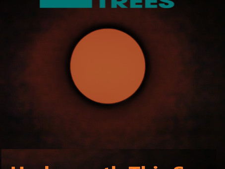 Interview with The Delerium Trees