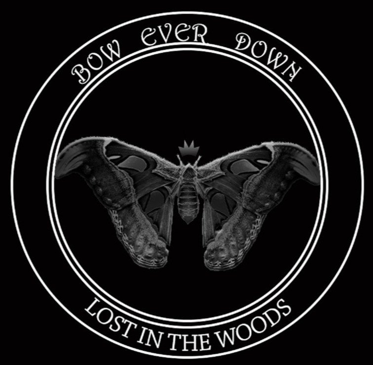 Bow Ever Down - dark synth pop. Lost in the Woods album is out now. Find music promotion on Tunebubble.com