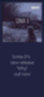 why banner blue.jpg