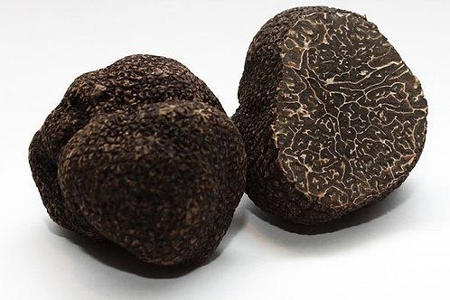 Tartufo Nero Pregiato (o di Norcia) - 50 grammi
