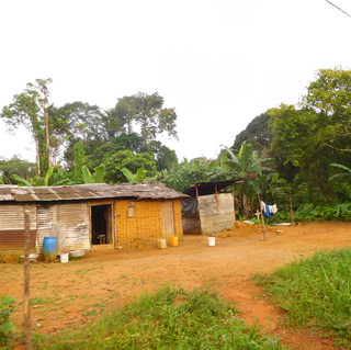 Many of the living conditions are below what we would consider comfortable by todays standards. This is an average home in the jungle where a whole family will live together.
