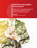 Article Cover - ESG Assurance.png